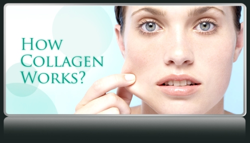 how-collagen-works_zps0c67aa1b